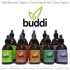 HdGrowLights - buddi Spray Aphids